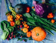 variety-of-vegetables-1458694