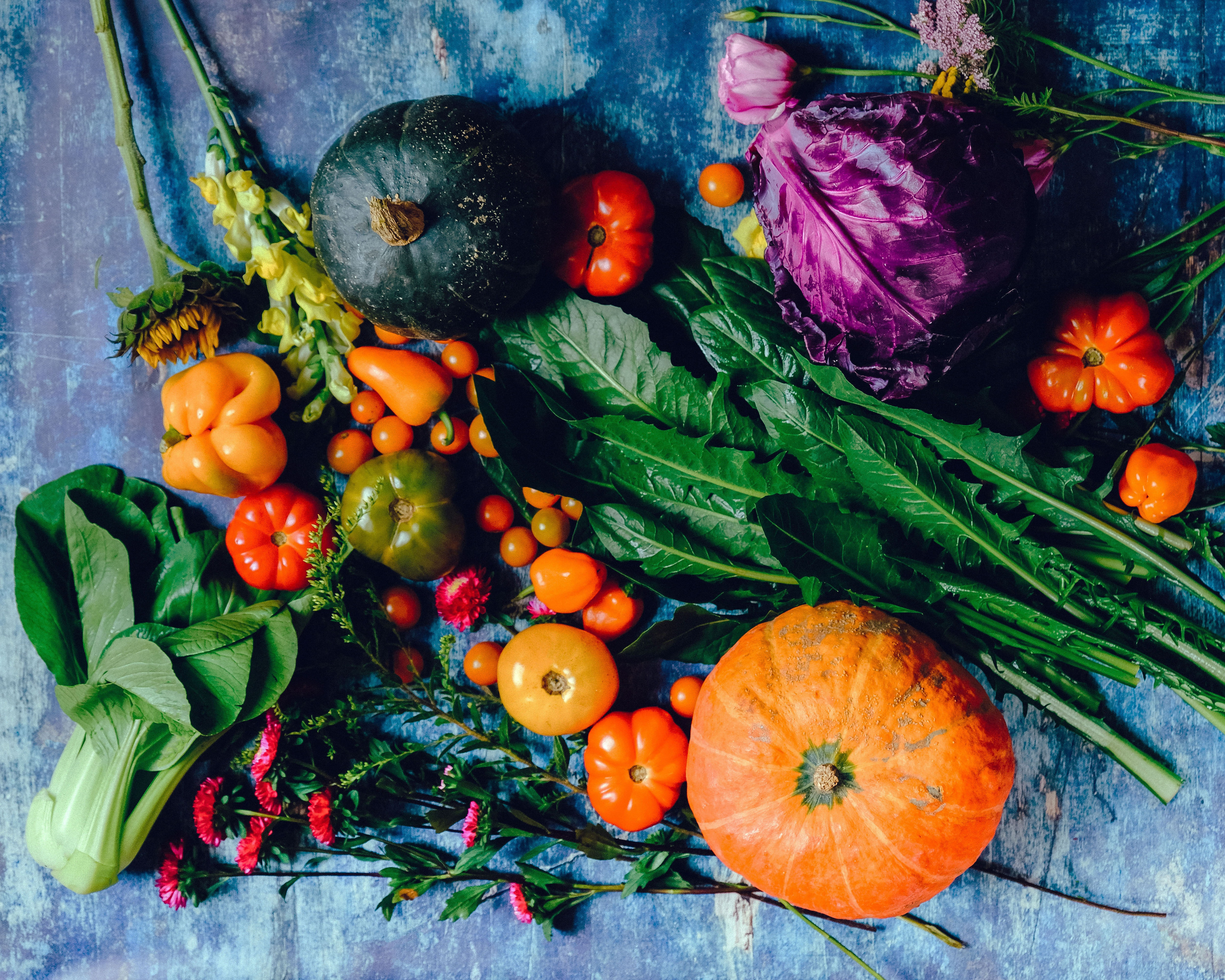 variety-of-vegetables-1458694